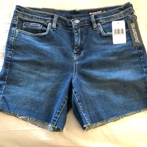NWT! BlankNYC Raw Hem Denim Short